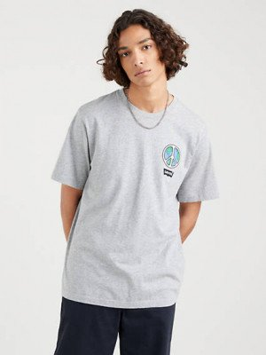 Levi's Relaxed Fit T shirt - Neutral / Neutral