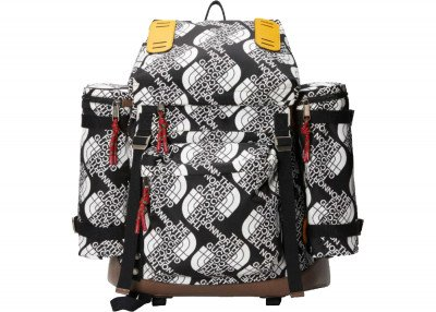 Gucci Gucci x The North Face Large Backpack Black/White/Silver-Tone (SS21)