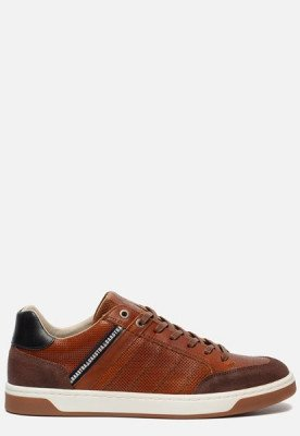 Gaastra Gaastra Wallace sneakers cognac