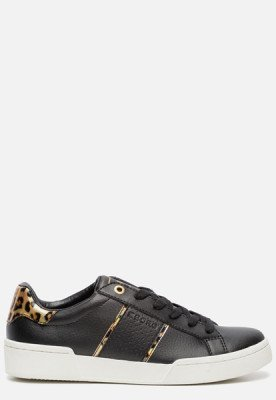 Bjorn Borg Bjorn Borg T306 IRD Leo sneakers zwart