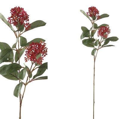 Firawonen.nl PTMD garden bloem red groen skimmiablad tak