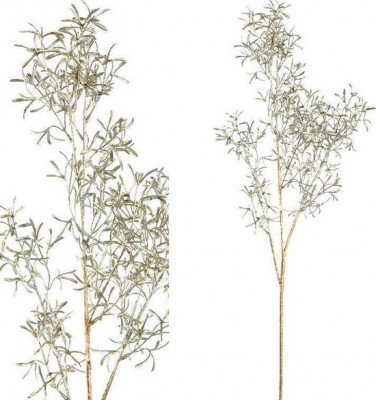 Firawonen.nl PTMD leaves plant groen rosemay branch