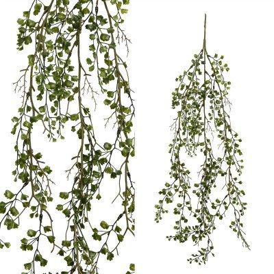 Firawonen.nl PTMD leaves plant groen hangende maidenhair tak