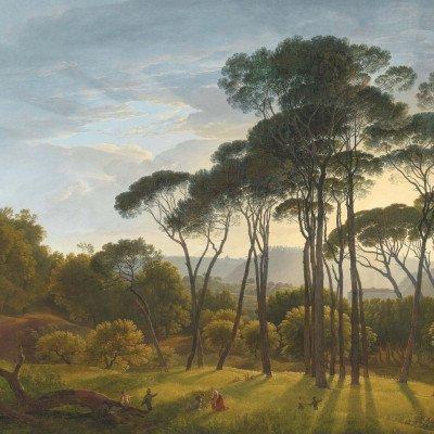 Growing Concepts Dana square - Italian Landscape with Umbrella Pines