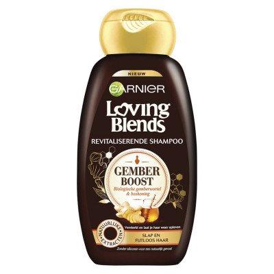 Garnier Garnier Loving Blends Boost Shampoo 300 ml
