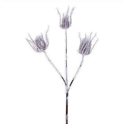 Firawonen.nl Thistle Plant white snow brown thistle spray
