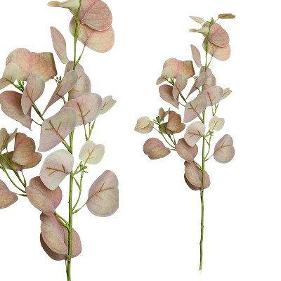 Firawonen.nl PTMD leaves plant roze rond eucalyptus tak