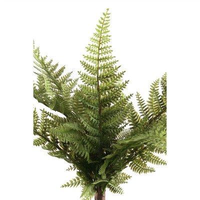 Firawonen.nl PTMD Fern Plant groene varen prikker breed L