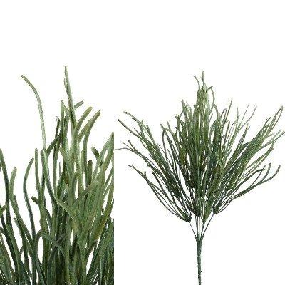 Firawonen.nl PTMD leaves plant groen zee gras struik