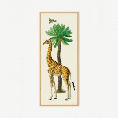 MADE.COM Natural History Museum, 'Vintage Giraffe', ingelijste print, 40x100 cm