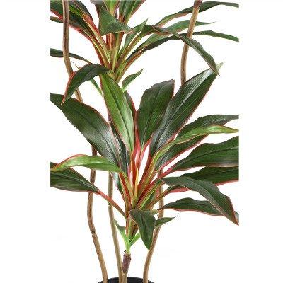 Firawonen.nl PTMD Tree Groene rode yucca boom met 4 stammen in pot