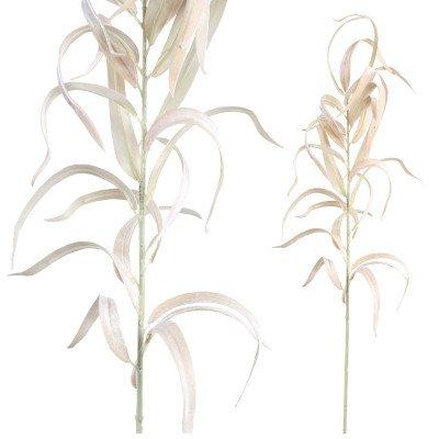 Firawonen.nl Leaves plant gold velvet sword eucalyptus spray