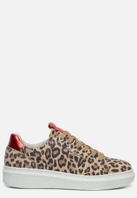 Ann Rocks Ann Rocks Sneaker luipaard