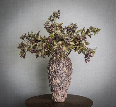 Firawonen.nl PTMD berry plant paars bessentak met bladeren