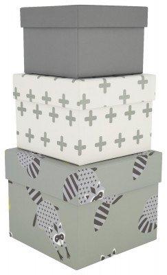 HEMA HEMA Kartonnen Dozen - Wasbeer - 3 Stuks