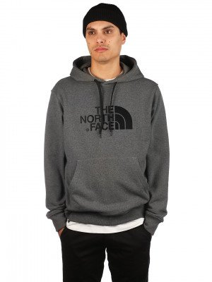 The North Face THE NORTH FACE Light Drew Peak Hoodie grijs