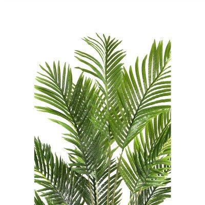 Firawonen.nl PTMD Tree Groene palmbladeren boom in zwarte pot L