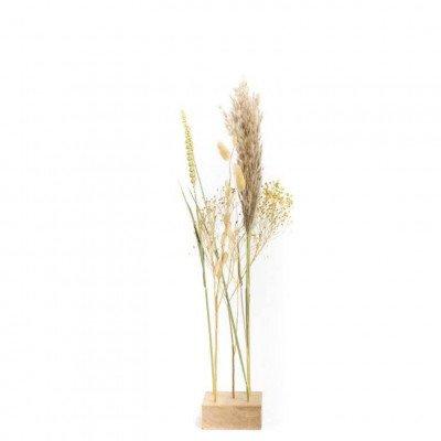 Growing Concepts Freya - Eiken standaard met 5 droogbloemen 10cm / 55cm / Droogbloemen