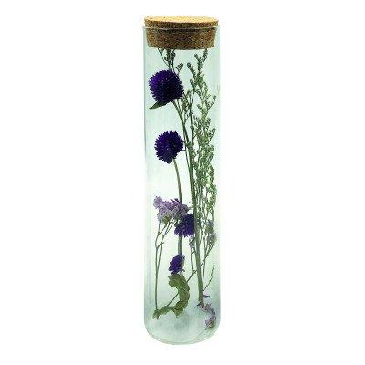 Ptmd jadine heldere glazen buis met gedroogde