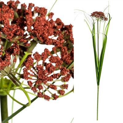 Firawonen.nl PTMD leaves plant green Grass alium Bordo