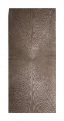 PTMD PTMD Wandpaneel 'Zapp', Hout, 180 x 80cm, kleur Bruin
