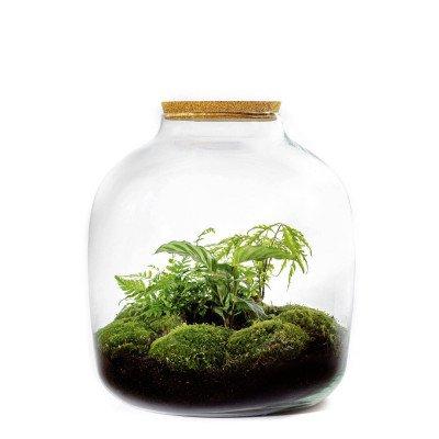 Growing Concepts Hebe XXL Cork 45cm / 40cm / Botanisch