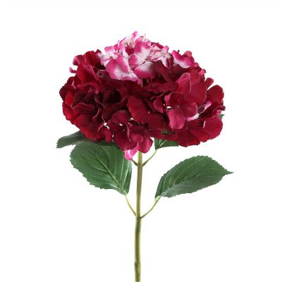 Firawonen.nl PTMD Hydrangea bloem dark pink stem