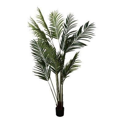 Firawonen.nl PTMD tree groen kwai palmboom in zwarte plastic