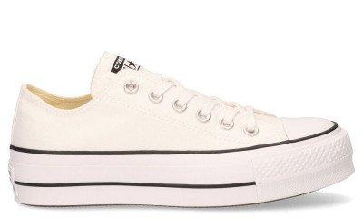 Converse Converse Platform Canvas CT AS Low Top 560251C Damessneakers