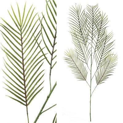 Firawonen.nl Fern plant green cycas leaf spray l
