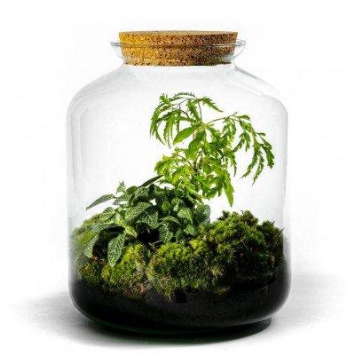 Growing Concepts Vidar 30cm / 17cm / Botanisch