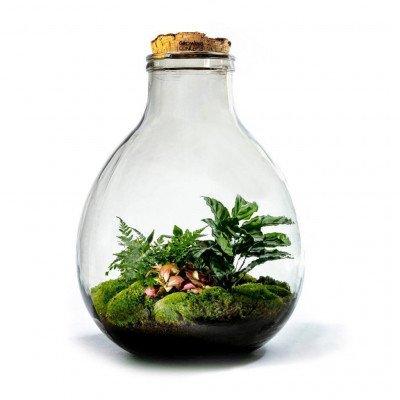 Growing Concepts EcoCork XXXL 54cm / 38cm / Botanisch