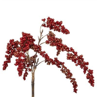 Firawonen.nl Berry Plant burgundy berry hanging bush