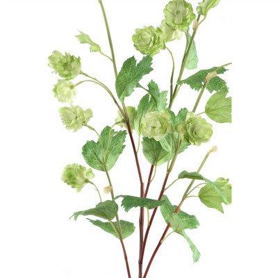 Firawonen.nl PTMD Garden Flower groene hop bloemen tak