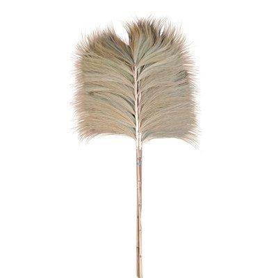 Firawonen.nl Ptmd gedroogde twig natuurlijk bamboe steel wijd
