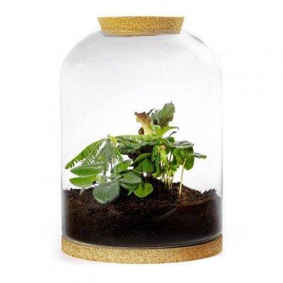 Growing Concepts Bragi Botanisch 35cm / 26cm / Botanisch