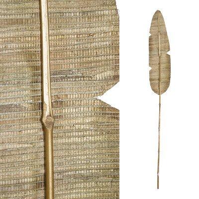 Firawonen.nl Ptmd gedroogde bloem gouden bamboe steel palmblad