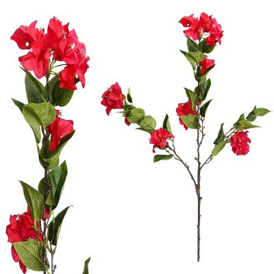 Firawonen.nl Garden bloem pink bougainvilea spray