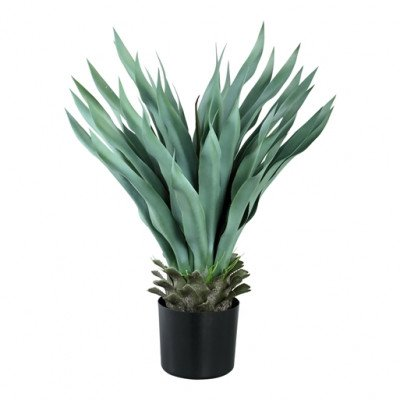 Firawonen.nl PTMD leaves plant groen agave in pot
