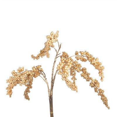 Firawonen.nl PTMD Berry Plant gold berry hanging bush