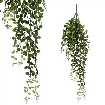 Firawonen.nl PTMD Leaves plant green hanging button leaves bush