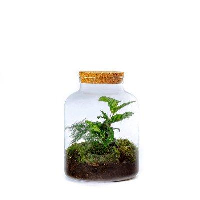 Growing Concepts Pontos Botanisch 30cm / 21,5cm / Botanisch