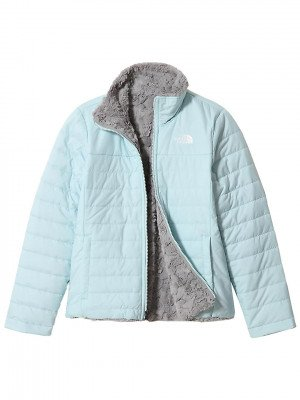 The North Face THE NORTH FACE Reversible Mossbud Swirl Jacket blauw