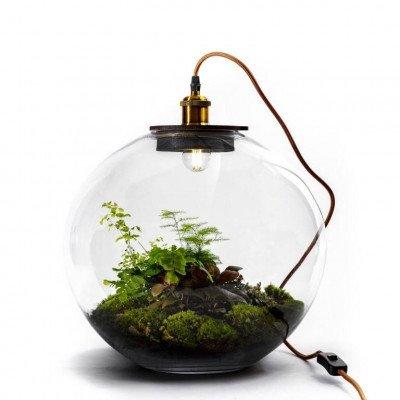 Growing Concepts Demeter 40cm / 45cm / Botanisch
