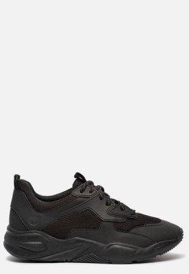 Timberland Timberland Delphiville sneakers zwart