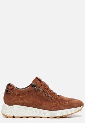 Linea Zeta Linea Zeta Sneakers bruin
