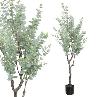 Firawonen.nl PTMD tree groen eucalyptus boom in zwarte plastic