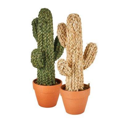 Xenos Cactus in pot - groen - 23x18x50 cm
