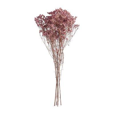 Xenos Gipskruid gedroogd - roze - 65 cm