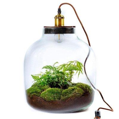 Growing Concepts Hebe XXL Lamp 54cm / 40cm / Botanisch